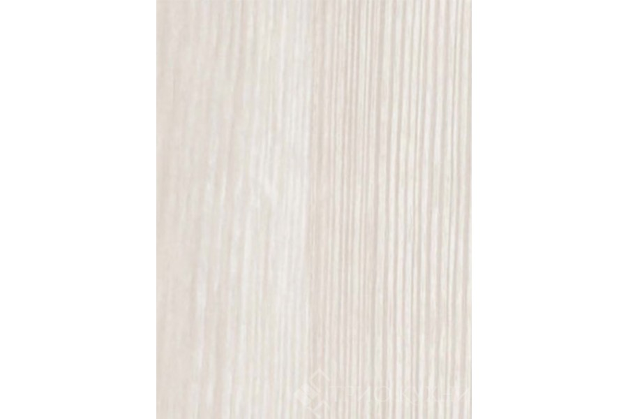 Белая сосна 0313 (A)
